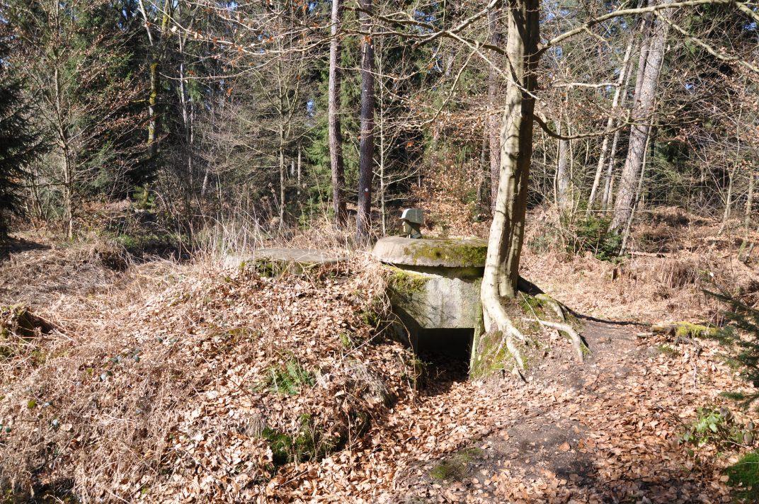 Blocao alemán en el bosque de Bienwald.